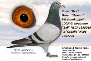 NL11-2027519