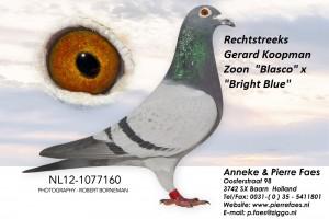NL12-1077160