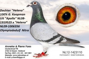NL12-1423110