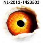 NL12-1423503