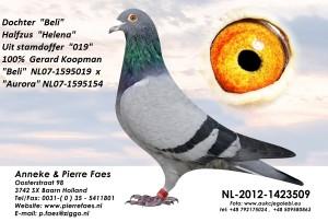 NL12-1423509