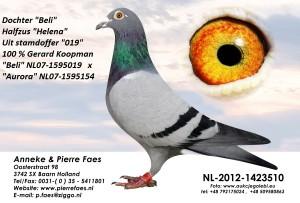 NL12-1423510