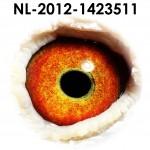NL12-1423511