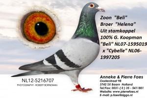 NL12-5216707