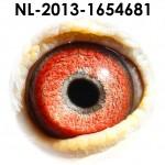 NL13-1654681