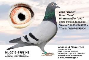 NL13-1956145