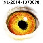 NL14-1373098