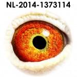NL14-1373114