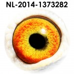 NL14-1373282
