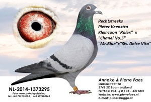 NL14-1373295