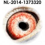 NL14-1373320