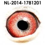 NL14-1781201