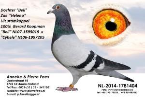 NL14-1781404