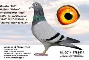 NL14-1781414