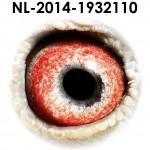 NL14-1932110