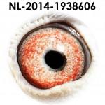 NL14-1938606