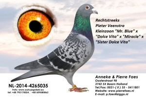 NL14-4265035